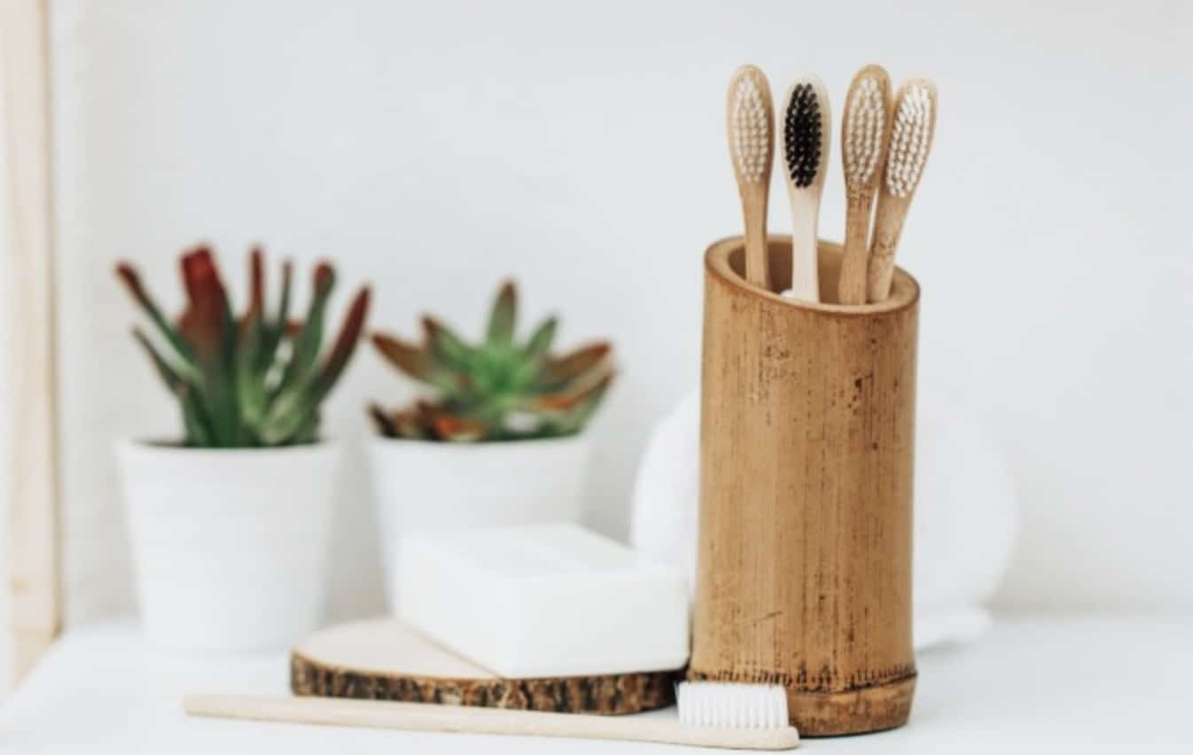 Are Bamboo Toothbrushes Really Eco Friendly?