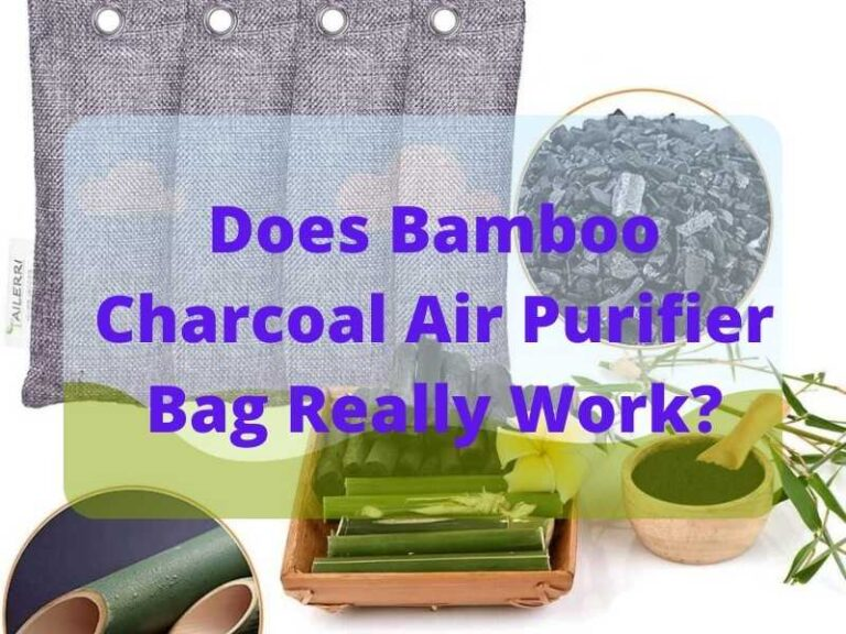 Does Bamboo Charcoal Air Purifier Bag Really Work?