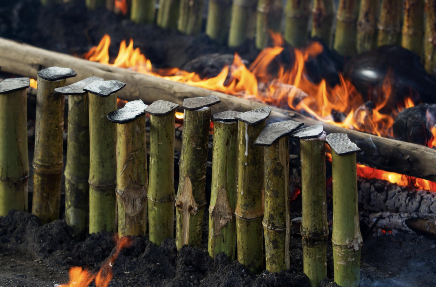 How to make bamboo charcoal at home