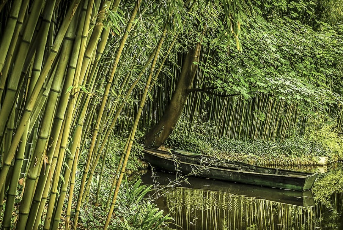 The bamboo exudes sophistication and simplicity.