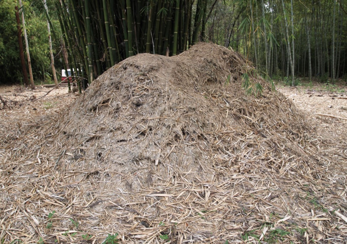 What Is A Bamboo Mulch