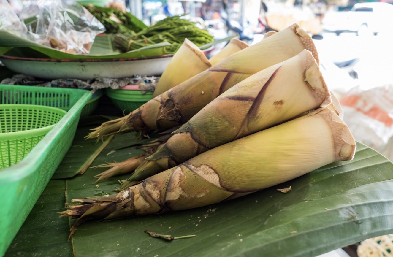 Humans use bamboo shoots to make food.