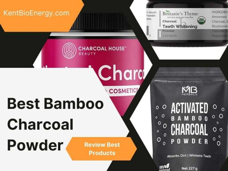 Best Bamboo Charcoal Powder