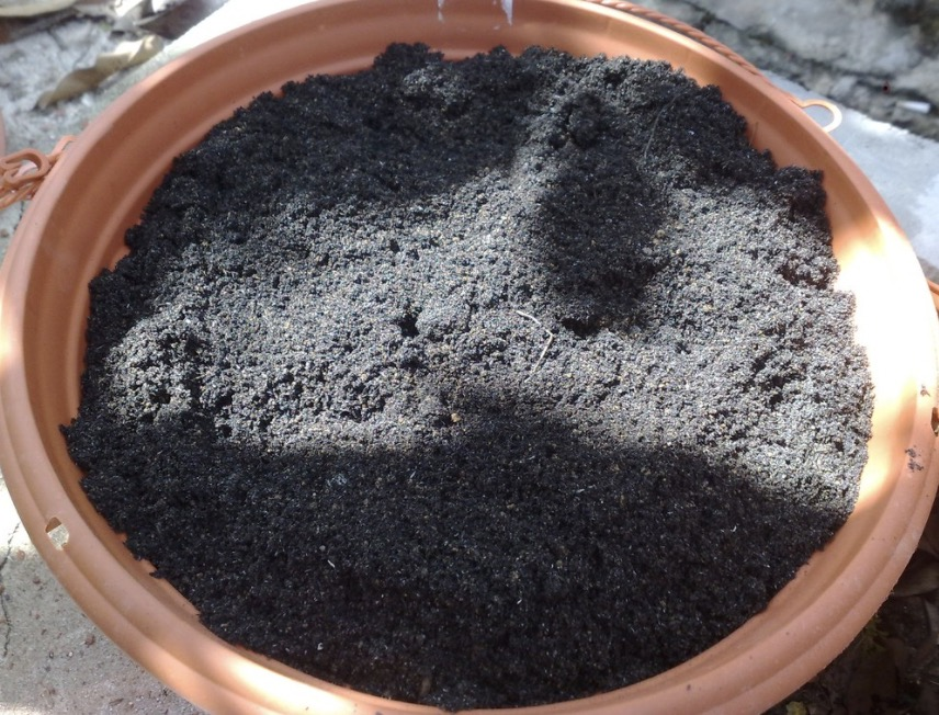 Potted Soil