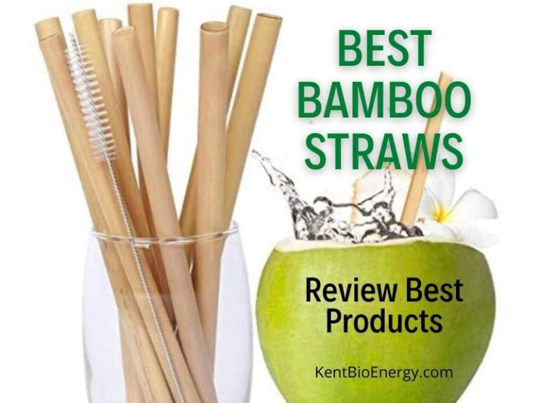 Best Bamboo Straws
